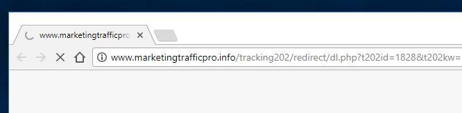 remove Marketingtrafficpro.info hijacker