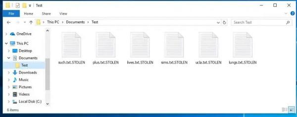 stolen ransomware